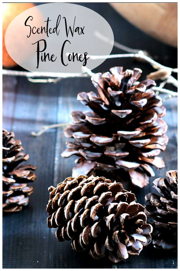 Scented wax pinecones