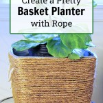 Rope basket with fiddle leaf fig