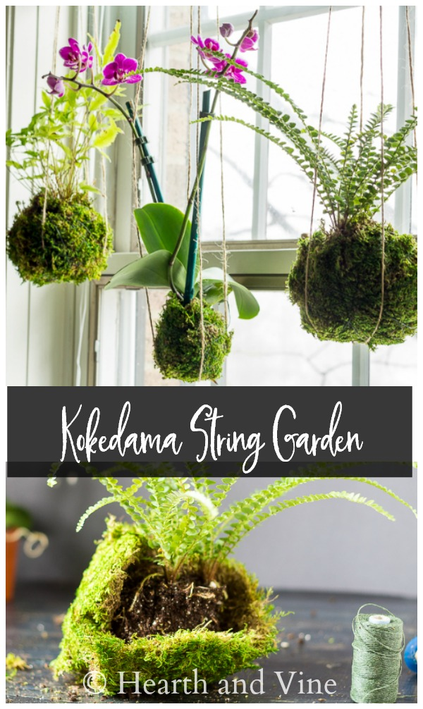 kokedama collage