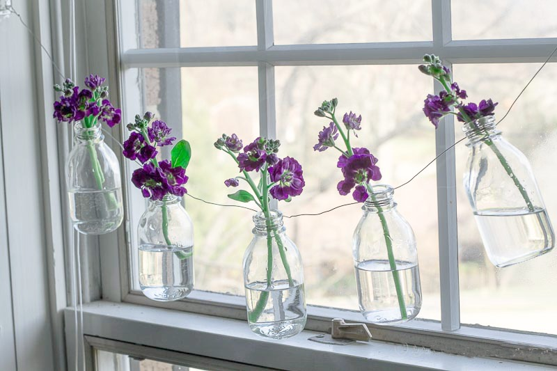 Purple stock flowers in bottle garland