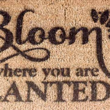 Bloom Stencil close up ~ Stencil Pattern Challenge ~ gardenmatter.com