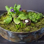 Moss and flowers in tray ~ mini moss garden ~ gardenmatter.com
