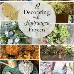 12 Decorating with Hydrangea Projects - gardenmatter.com