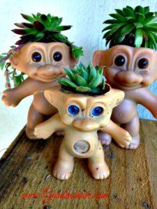 3Troll-doll-succulents-www.Gardenchick.com_