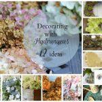 Decorating with Hydrangeas - gardenmatter.com