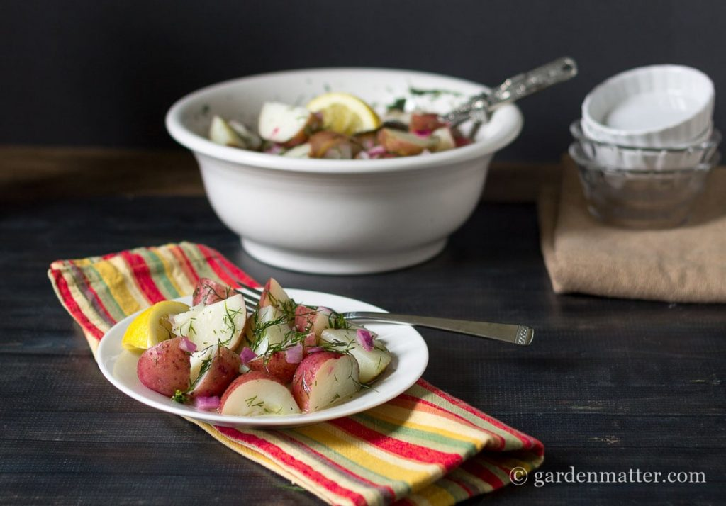 Summery Lemon & Dill Red Potato Salad