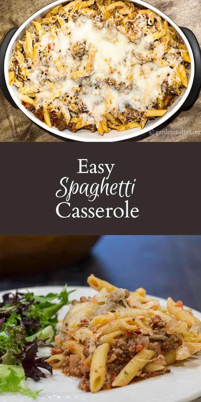 This easy spaghetti casserole recipe is a great comfort food that feeds a crowd and tastes great the next day. Easy to adapt and make ahead.