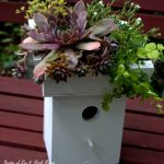 Finished-Greenroof-Birdhouse-Our Fairfield Home