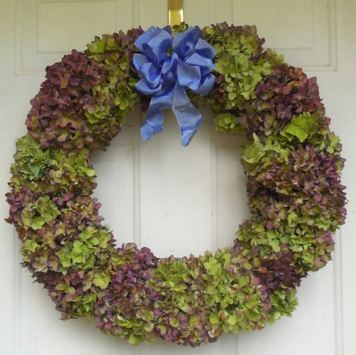 Hydrangea Wreath Gardening Cook ~ decorating with hydrangeas