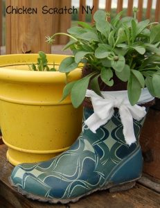 Rubber Boot Plante- chicken scratch ny