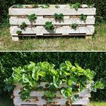 strawberry-pallet-planter-project-lovely greens