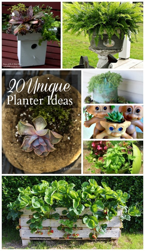 20 unique planters ideas