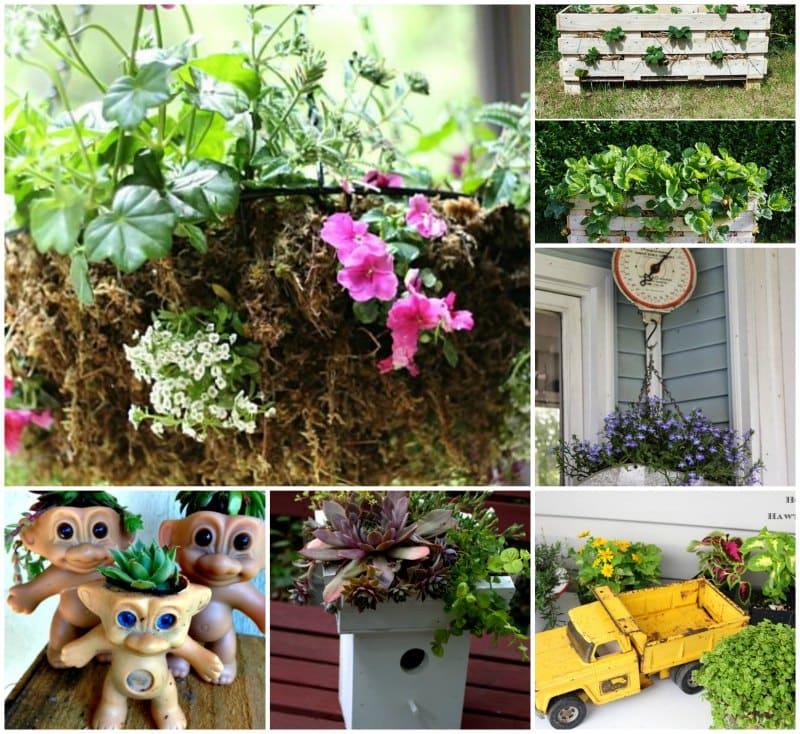 20 Unique Planters - gardenmatter.com