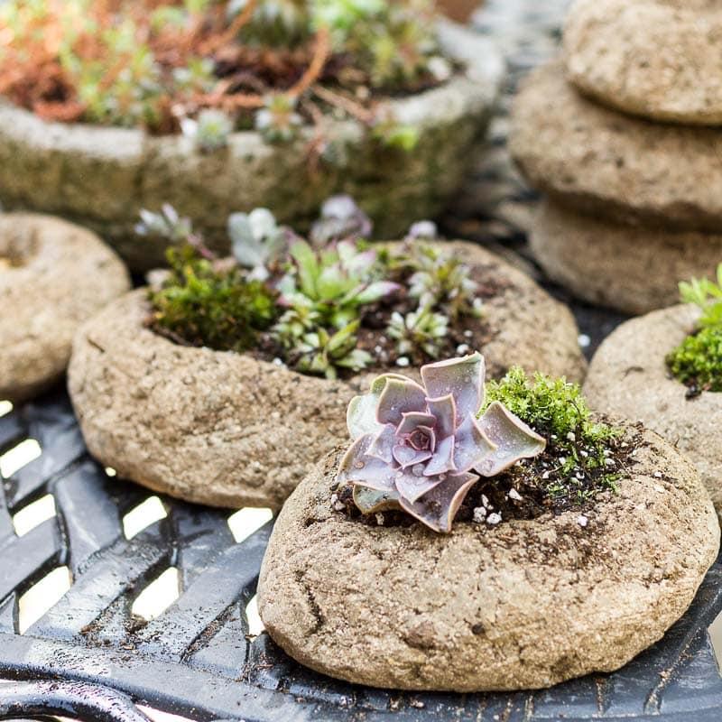 Hypertufa planted containers ~ Freeform Hypertufa Planters ~ gardenmatter.com