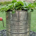 flour_sifter_planter_oursouthernhome