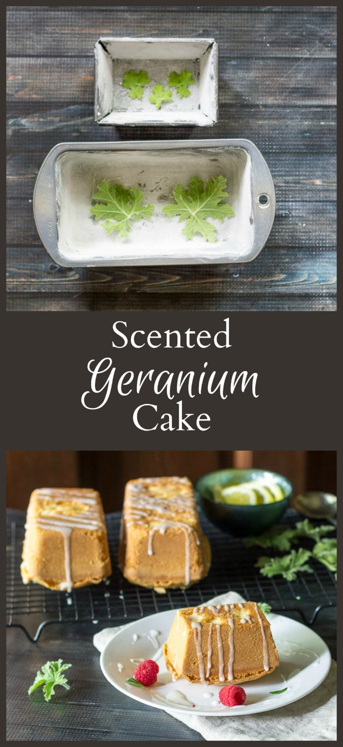 This recipe for scented geranium cake is so easy to make and will add a subtle flowery taste to a pound cake or other box mix.
