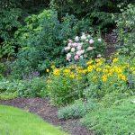 garden pic - 10 summer gardening tips ~ gardenmatter.com