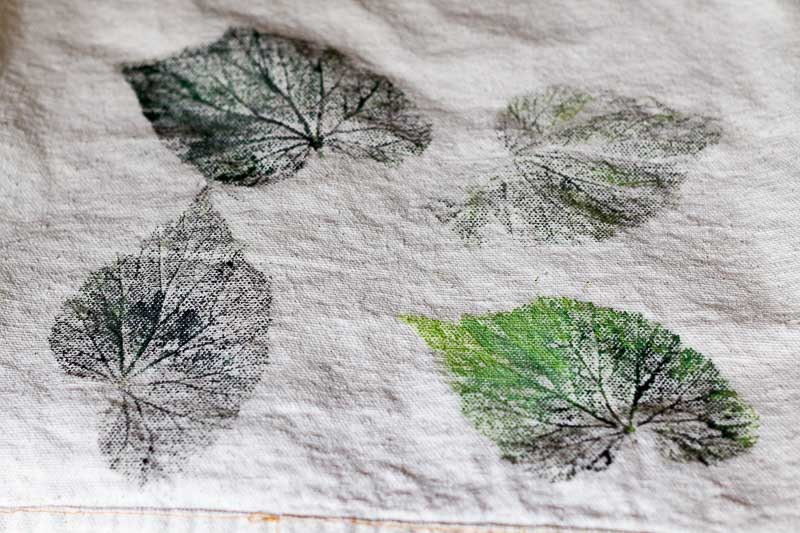 Test prints of leaves with paint and different shades of green.