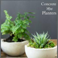 Concrete Mini Planters