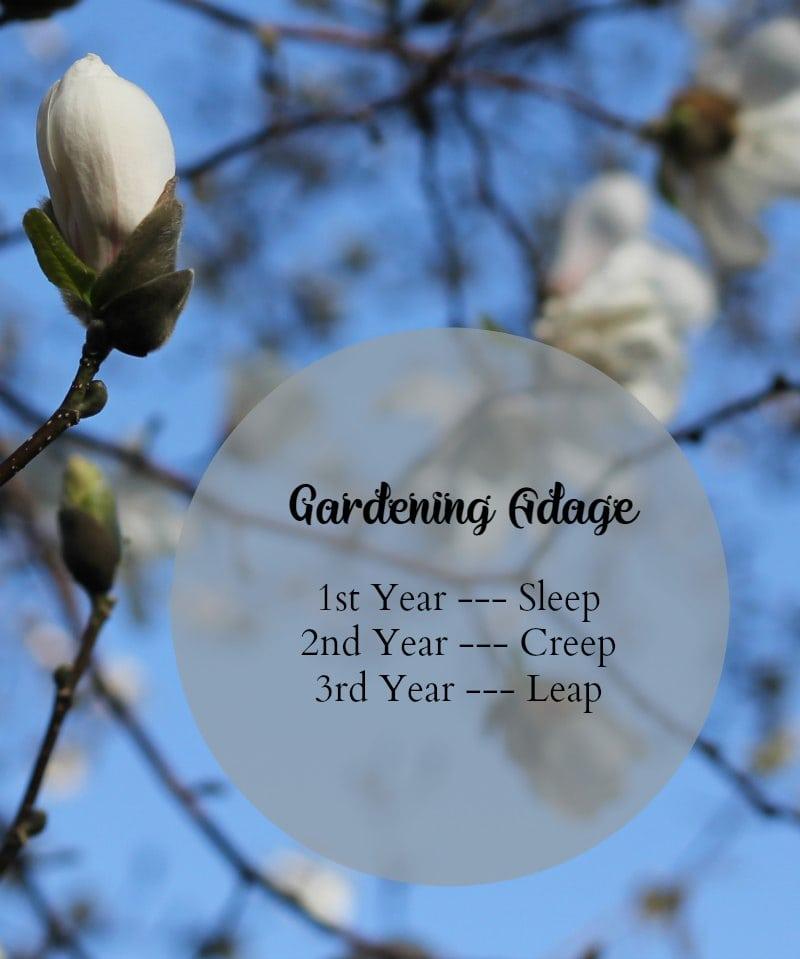 Garden Adage Rule of Thumb