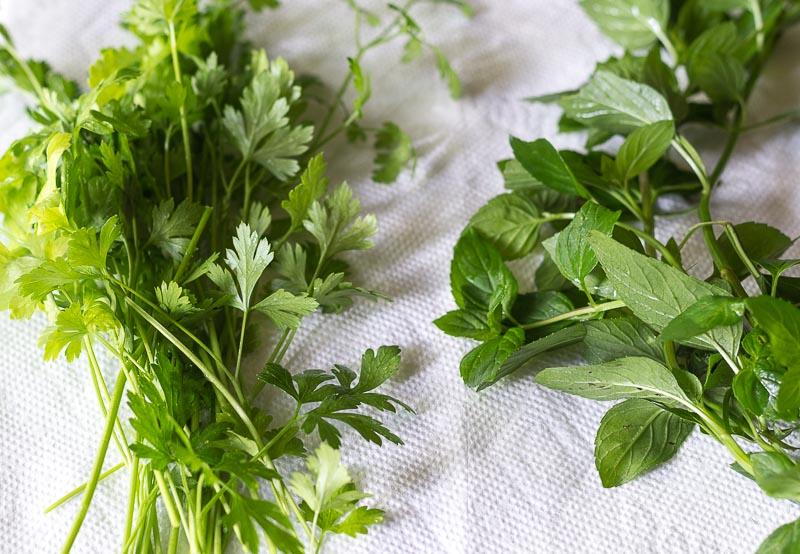 Middle Eastern Bread Salad - Parsley & Mint Leaves