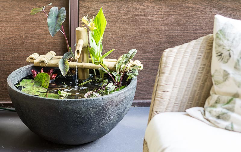 Patio Pond - next to couch