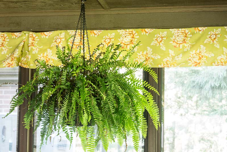 Porch Reveal - Fern and Valance