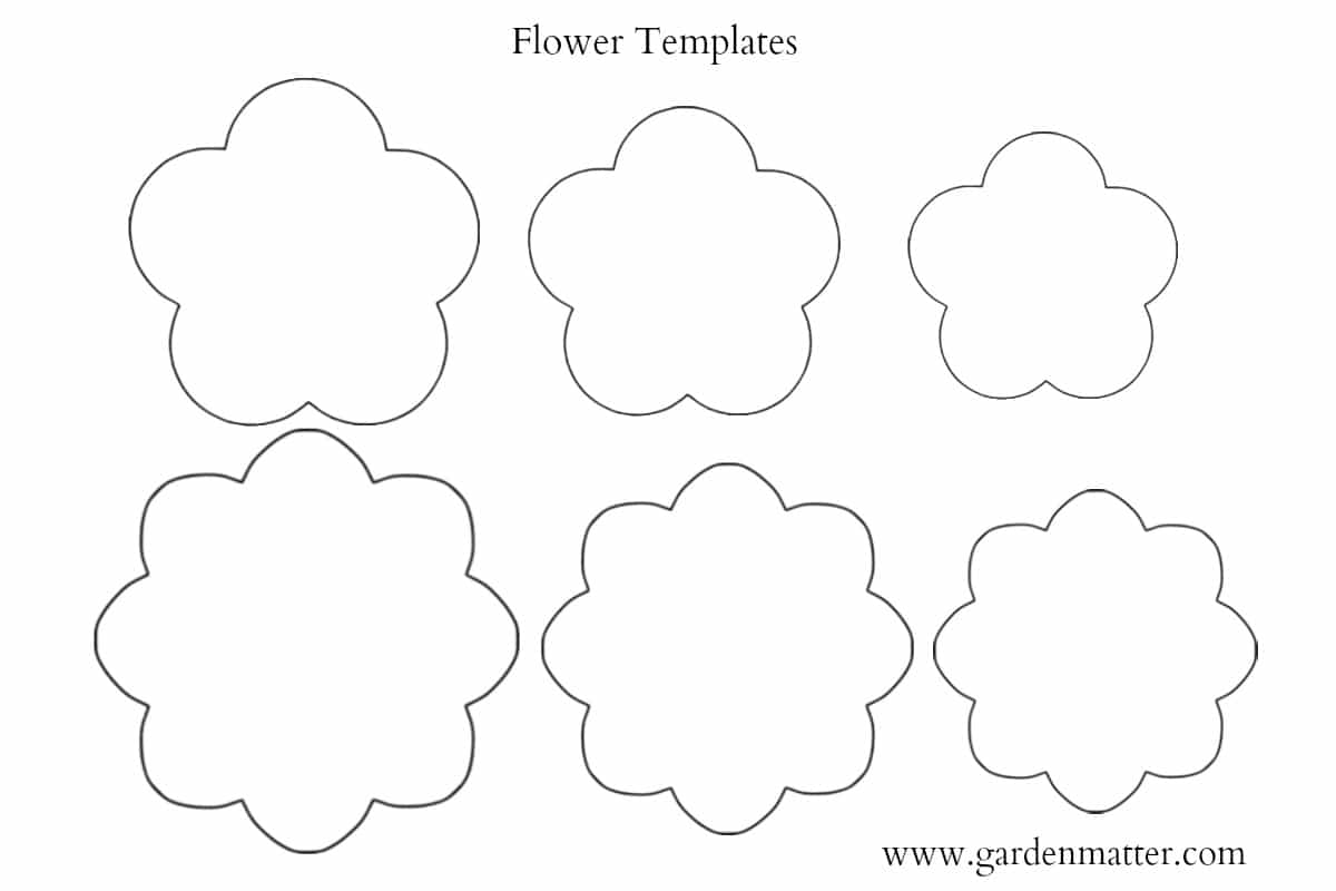 This is a graphic of Priceless Felt Flower Template Printable