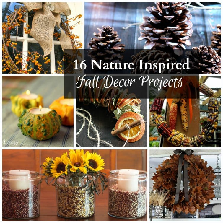 nature inspired fall decor projects collage