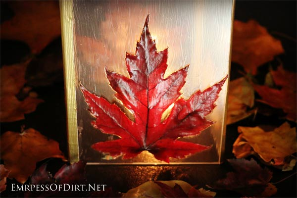 diy-leaf-lantern-empress-of-dirt