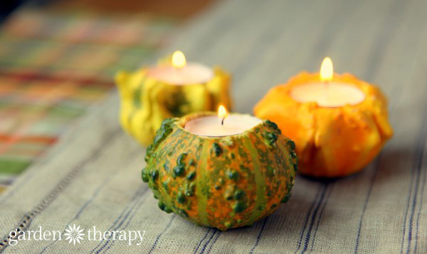 ornamental-gourds-candles-garden-therapy