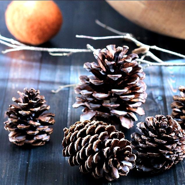 scented-pine-cones-sq2-gardenmatter-com