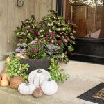 fall-planter-front-porch-view