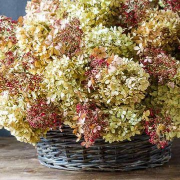 dried hydrangea basket