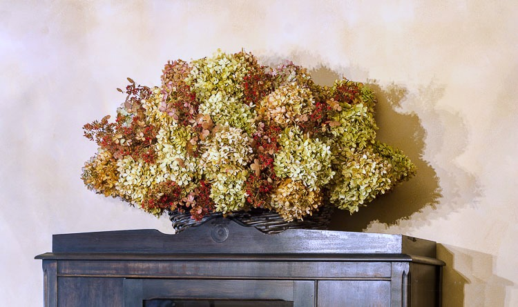 Dried hydrangea basket on cabinet
