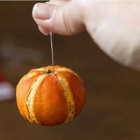 Dried clementine with wire hanger