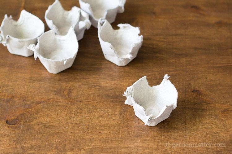 egg-carton-pieces