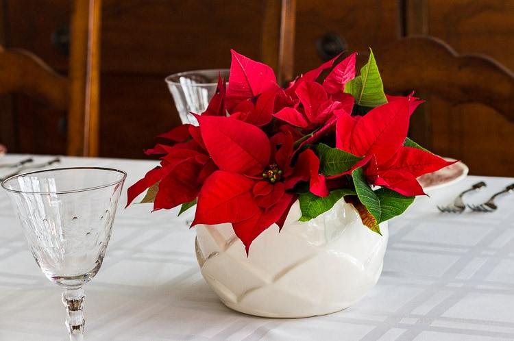 A simple centerpiece for the holiday table with poinsettias