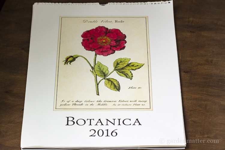 Botanical calendar for gallery wall.