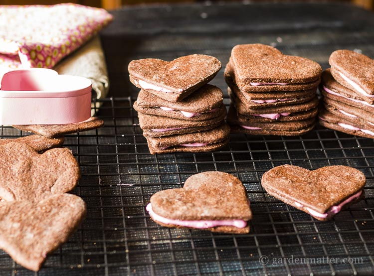 Chocolate Buttercream Cookies for Valentine's Day