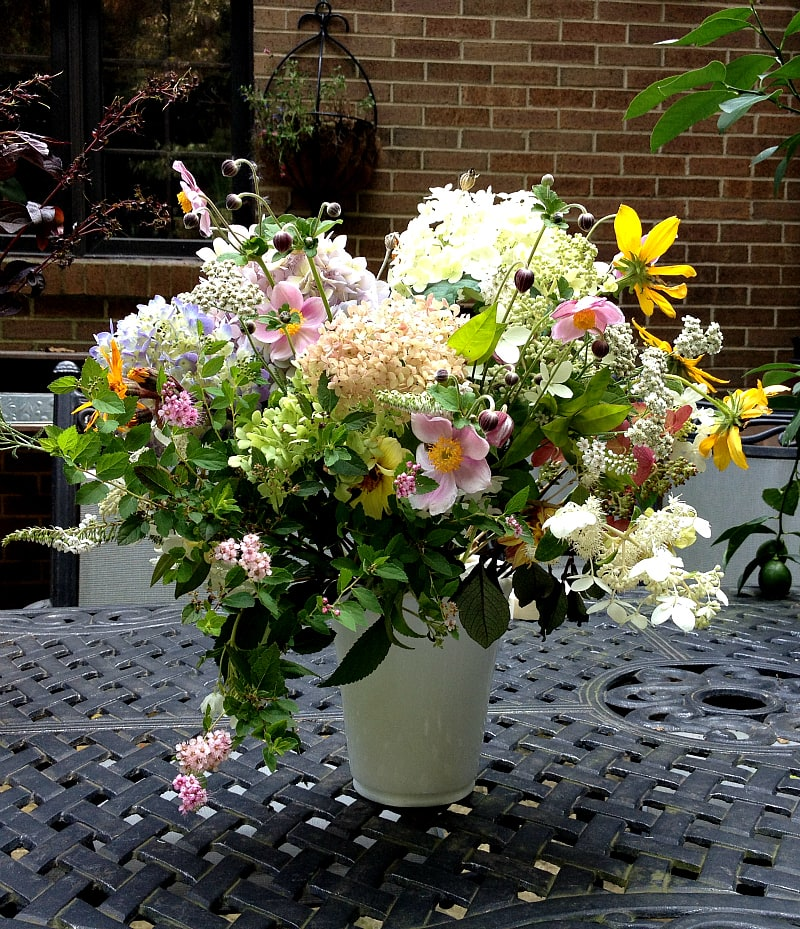 10 easy to grow perennials for cut flower arrangements