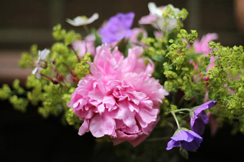 flower arrangement from the garden