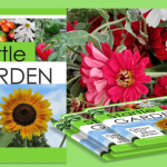 Startle Garden – Review & Giveaway