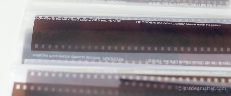 Old 35 mm negative strips