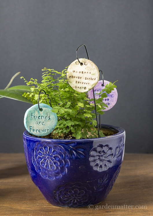 Fern planters with garden charms.