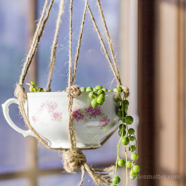 Hanging teacup planter with china and pearls