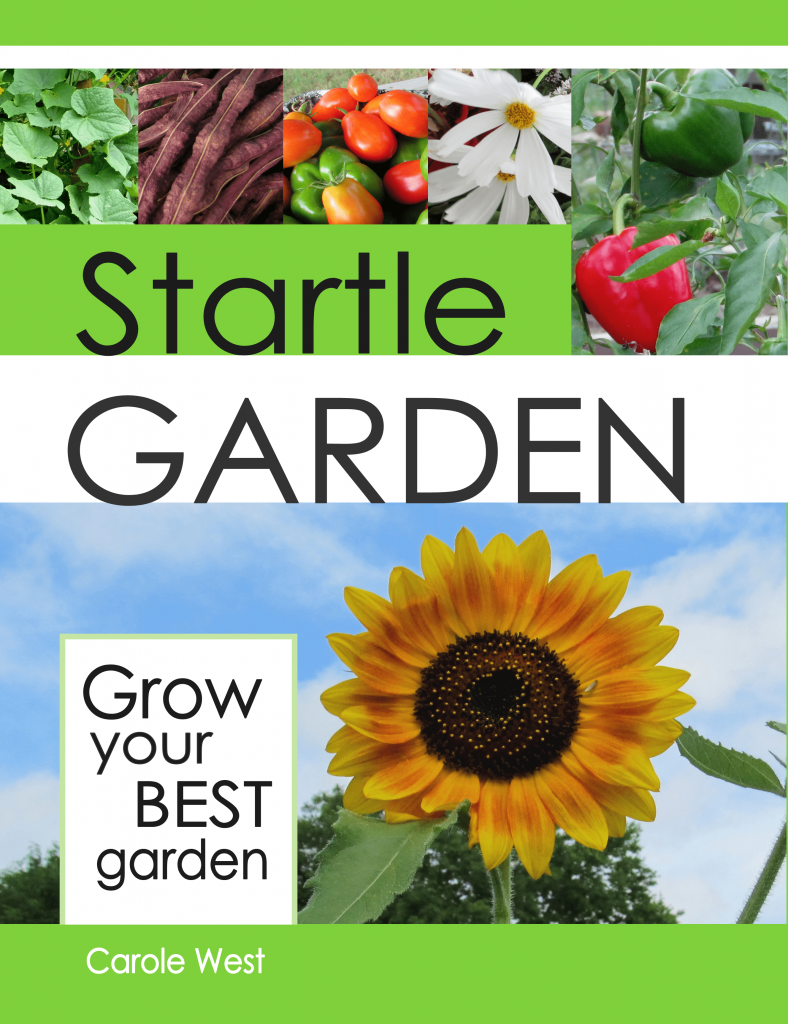 A wonderful book, startle garden,  for the beginning and experienced gardeners alike.