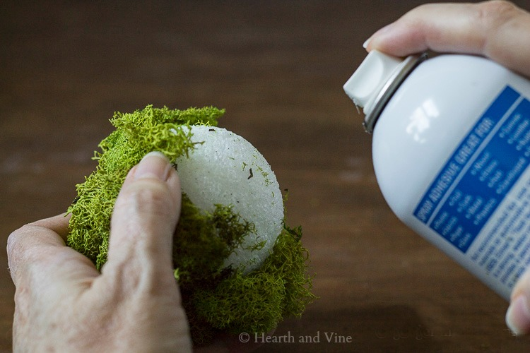 Spray glue on styrofoam ball with moss