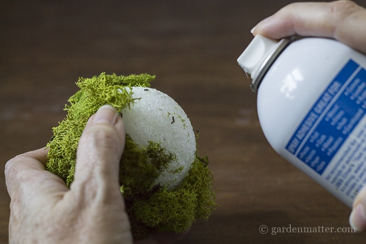 Spray adhesive to glue reindeer moss to foam ball.