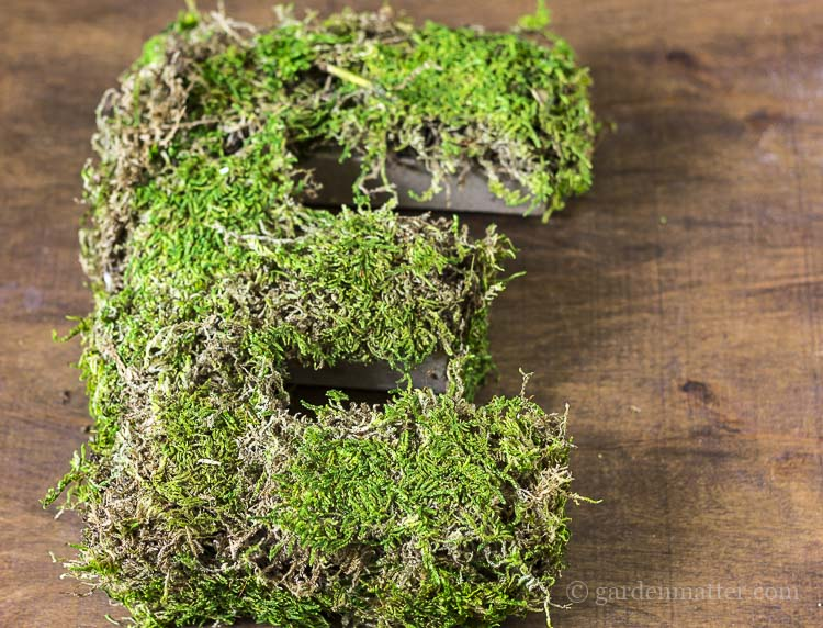 Preserved natural moss in sheet form to decorate your door.